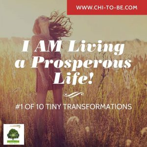 #1 of 10 Tiny Transformations