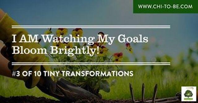 3-of-10-tiny-transformations