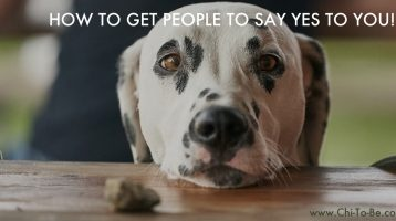 How To Get People To Say 'YES' Without Begging