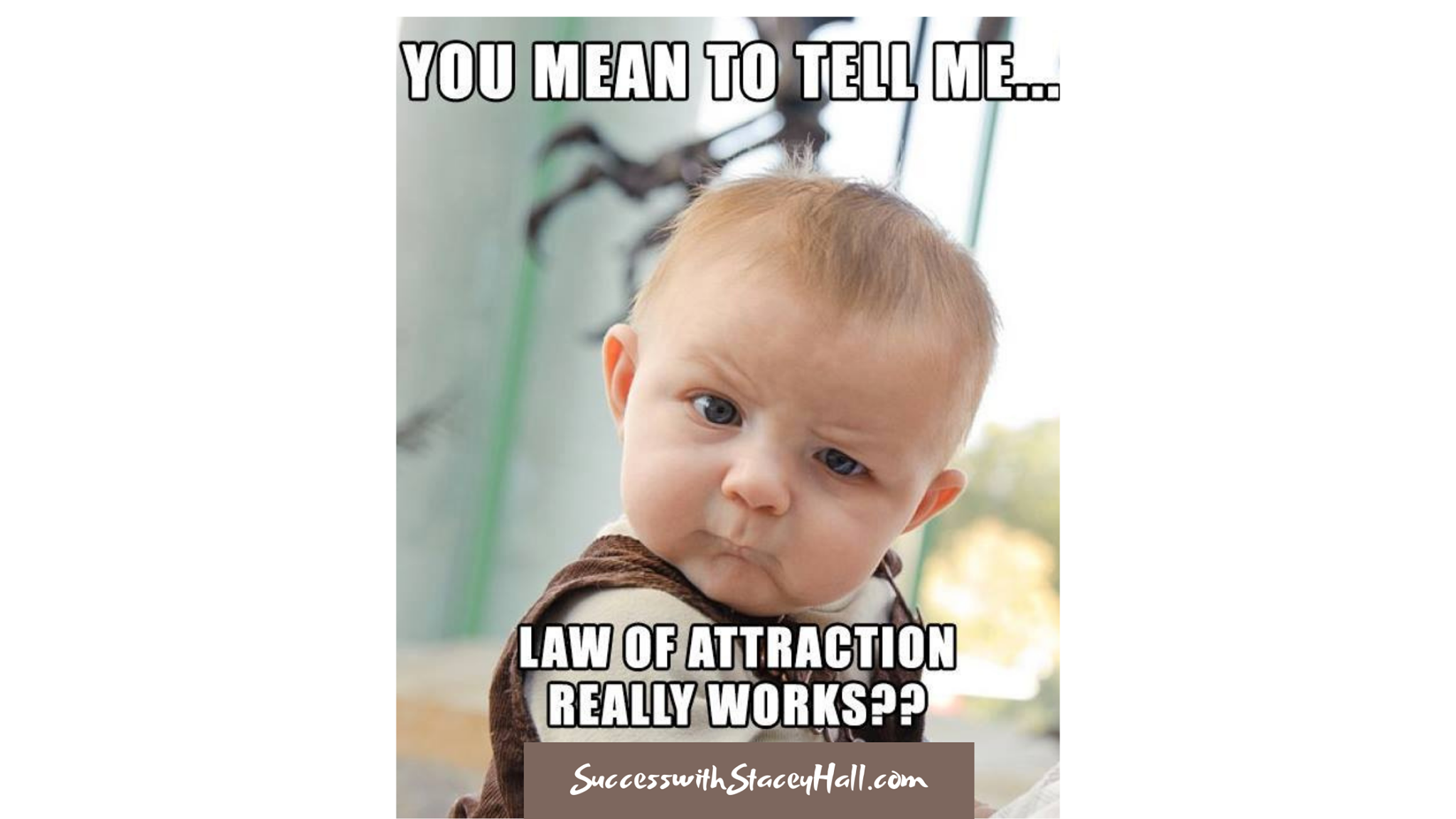 You mean Law of Attraction Really Works