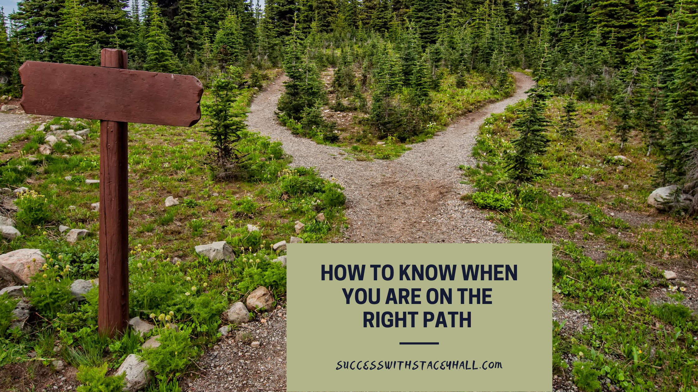 How To Know You Are On The Right Path